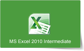 Microsoft Excel 2010 Intermediate Training Course