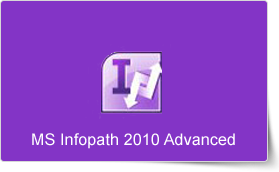 Microsoft InfoPath 2010 Advanced Training Course